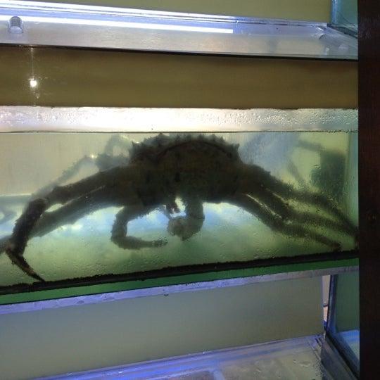 7/22/2012에 Tom B.님이 Oriental Garden 福臨門海鮮酒家에서 찍은 사진