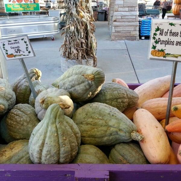 Foto tirada no(a) Nick's Garden Center & Farm Market por Allison M. em 10/8/2013
