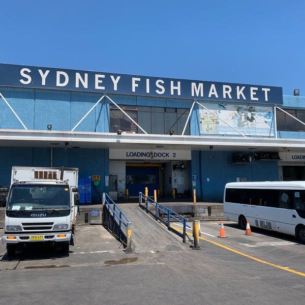 Foto scattata a Peter's Fish Market da Jesse G. il 11/11/2019