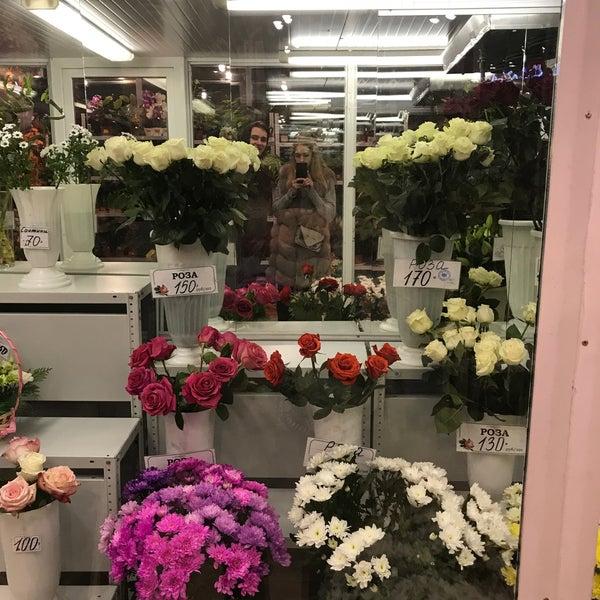 Купить магазин цветов в москве 24 часа