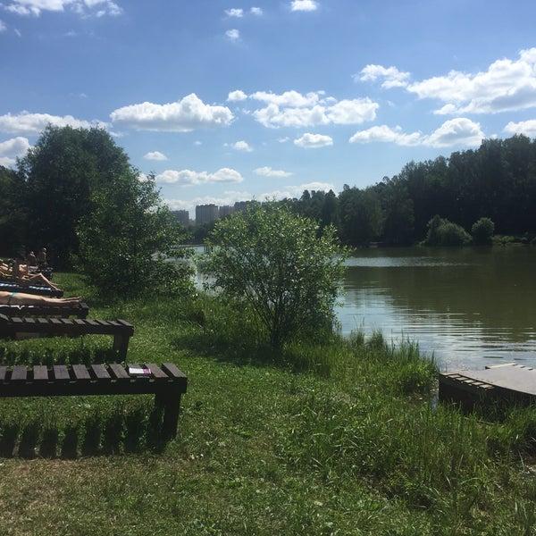 Николаевские пруды круглое фото и ботанический сад