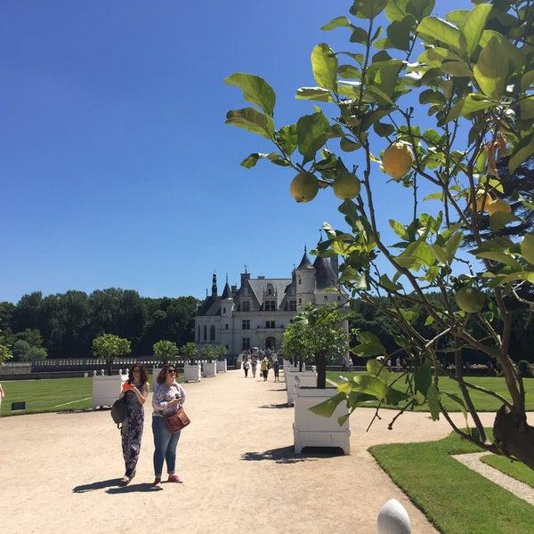7/9/2016에 Gustavo M.님이 Château de Chenonceau에서 찍은 사진