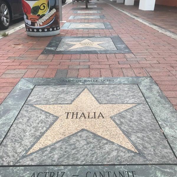 calle ocho walk of fame