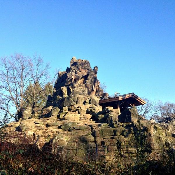 12/28/2012에 Andrey S.님이 Zoologischer Garten Berlin에서 찍은 사진