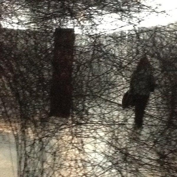 Foto scattata a CCC Strozzina da Laura G. il 12/20/2012