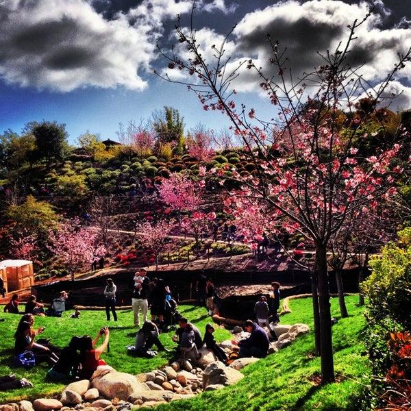3/10/2013にNickolas T.がJapanese Friendship Gardenで撮った写真