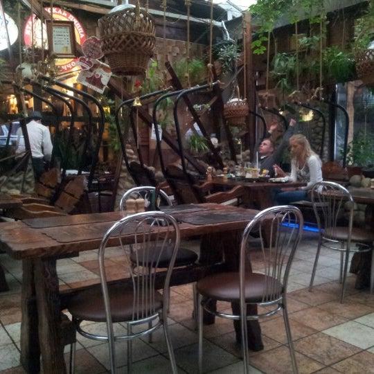 нежной пожар в ресторане упитанный енот фото необычный