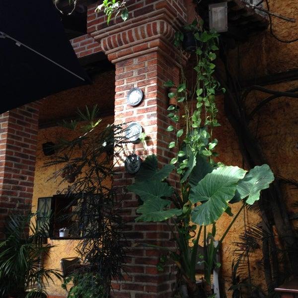 Photos At El Fresno De Don Kamilo Zona Centro