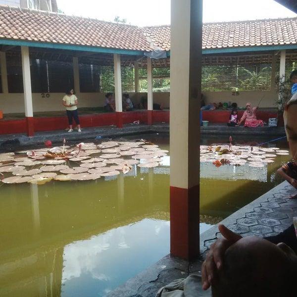 Pemancingan Suharno Ii Bawen Jawa Tengah