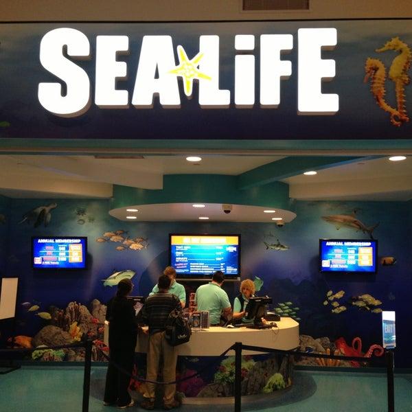 6/9/2013에 Garry C.님이 SEA LIFE Minnesota Aquarium에서 찍은 사진