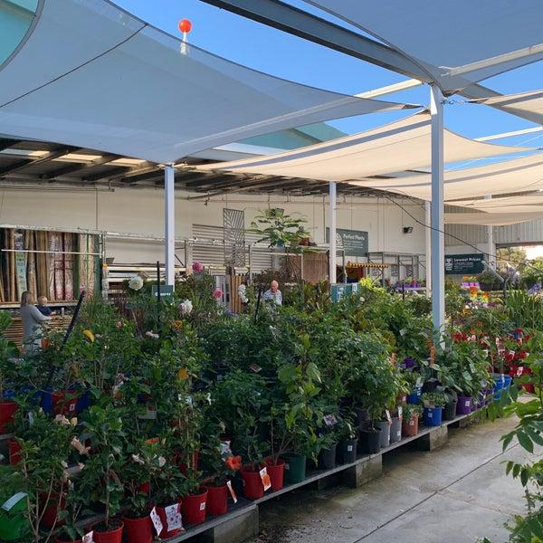Photos at Bunnings Warehouse - Hillarys, WA