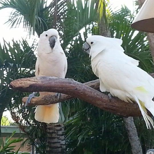 10/28/2012에 Jinie Cas/ N.님이 Miami Seaquarium에서 찍은 사진