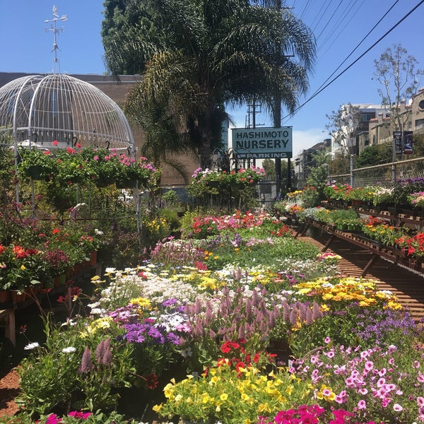 Photo Taken At Hashimoto Nursery By Susan T On 5 28 2017