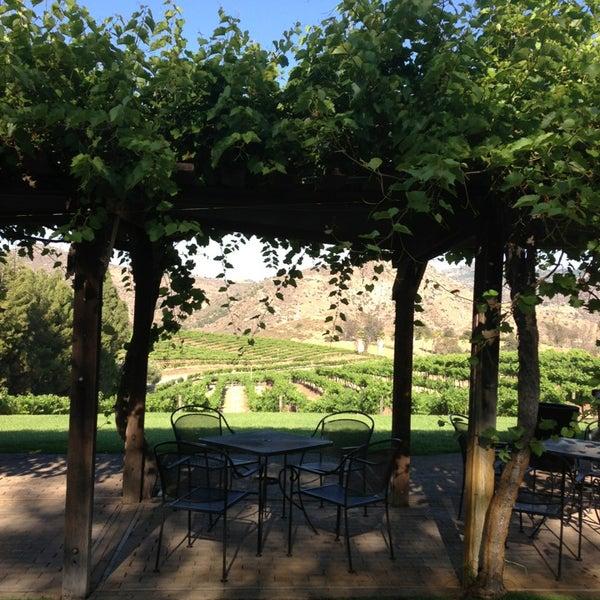 รูปภาพถ่ายที่ Orfila Vineyards and Winery โดย Brenda V. เมื่อ 6/6/2013