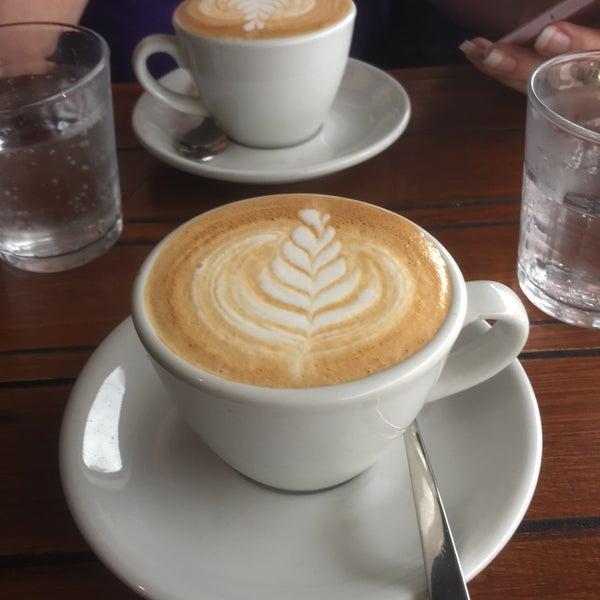 3/16/2017にMistyがEveryday Coffeeで撮った写真