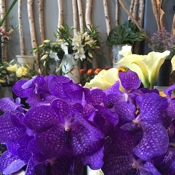Flower Shop In Chicago