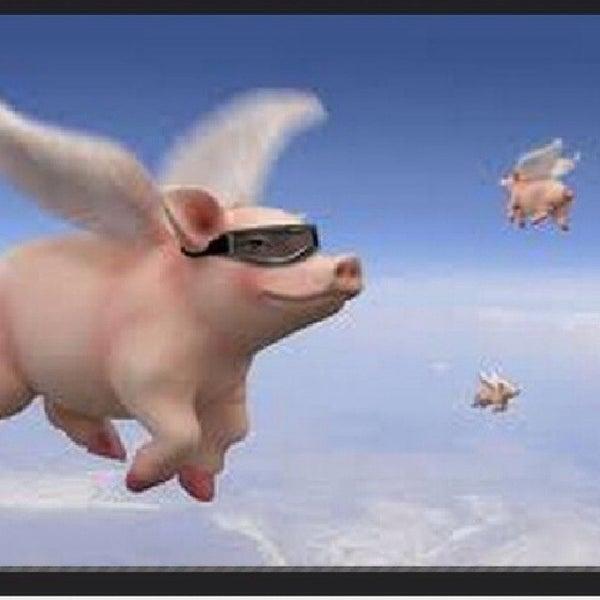 Foto tomada en The Flying Pig por B⃣A⃣R⃣D⃣ⓚⓐⓣⓐⓝⓐ❶❶® el 2/1/2014