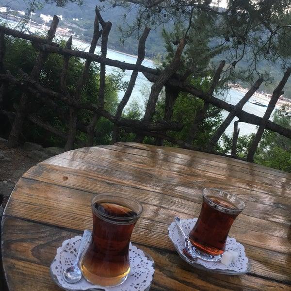 4/25/2019に🌸がYörük Parkıで撮った写真