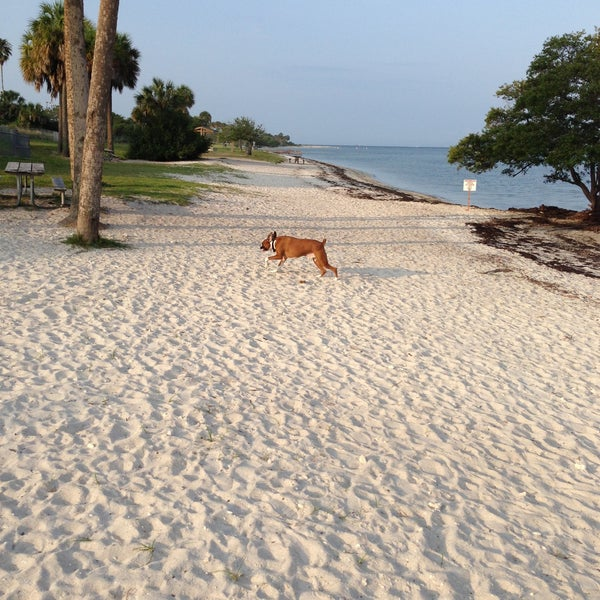 Photo Taken At Picnic Island Beach Dog Park By Jason D On 5 11