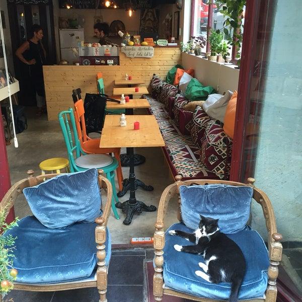 Limonata ve brownie harika. Gayet hoş müzik. Kedi misafirler de çok sevimliler.