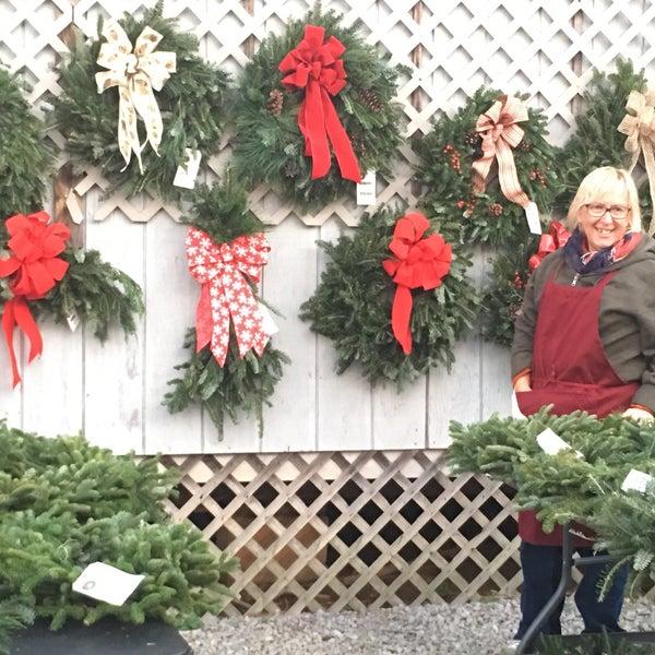Photo taken at Country Cove Christmas Tree Farm by Marynell C. on 11/22 - Photos At Country Cove Christmas Tree Farm - Murfreesboro, TN