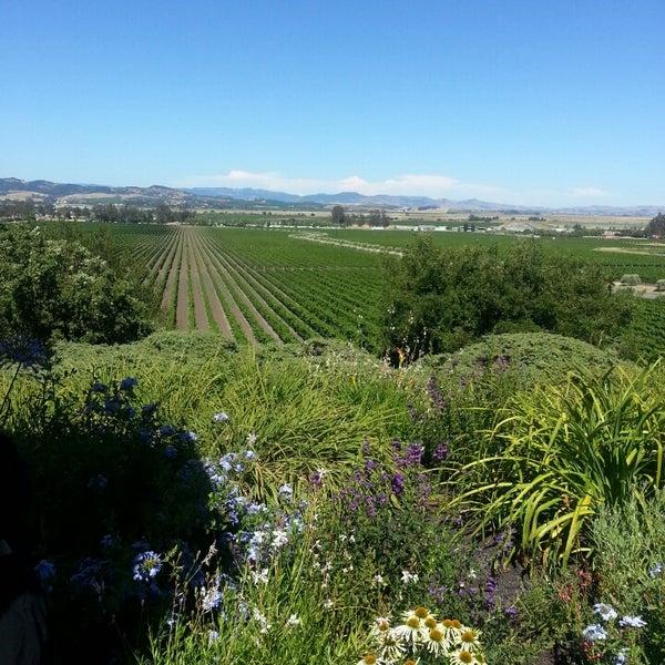 Das Foto wurde bei Gloria Ferrer Caves & Vineyards von Matt B. am 6/28/2013 aufgenommen