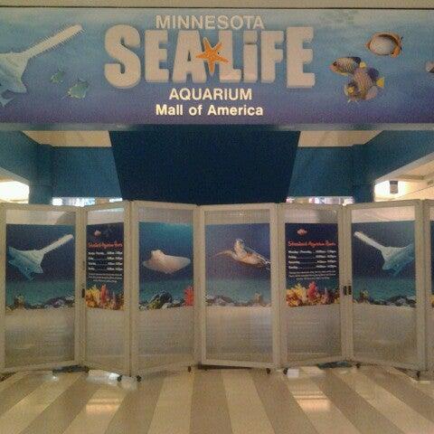5/23/2013에 Michael B.님이 SEA LIFE Minnesota Aquarium에서 찍은 사진
