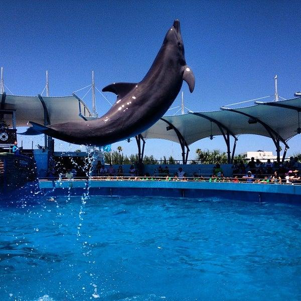 5/8/2013에 Mauricio G.님이 Miami Seaquarium에서 찍은 사진