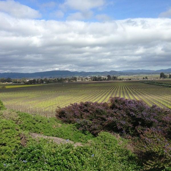 Das Foto wurde bei Gloria Ferrer Caves & Vineyards von Kathy am 3/5/2013 aufgenommen