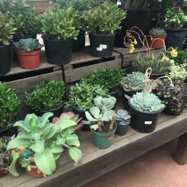 Foto tirada no(a) Nick's Garden Center & Farm Market por Veronica O. em 2/18/2017