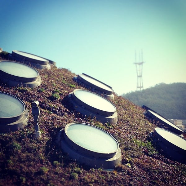 รูปภาพถ่ายที่ California Academy of Sciences โดย Andrew เมื่อ 1/21/2013