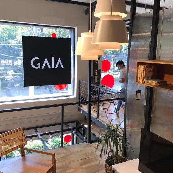 Tienda Gaia Design Roma Norte