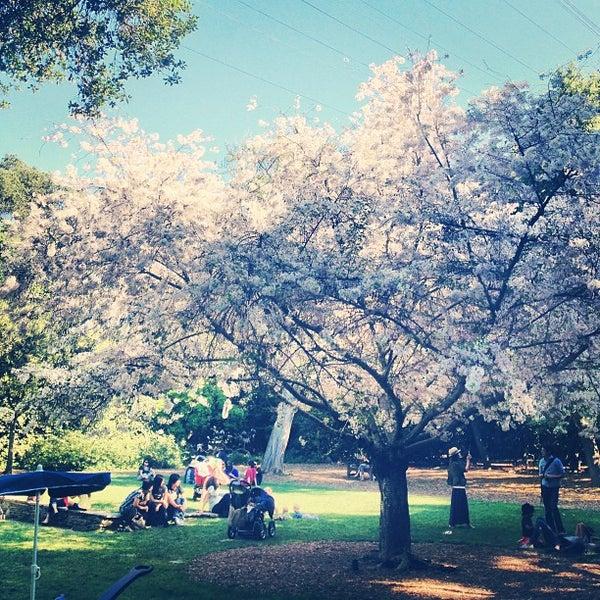 3/30/2013 tarihinde Gaile D.ziyaretçi tarafından Descanso Gardens'de çekilen fotoğraf