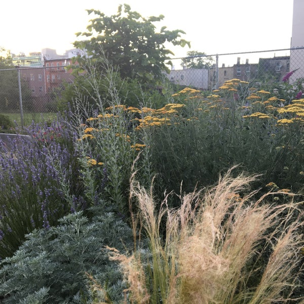 Photos At Outside Space Nyc Landscape Garden Design