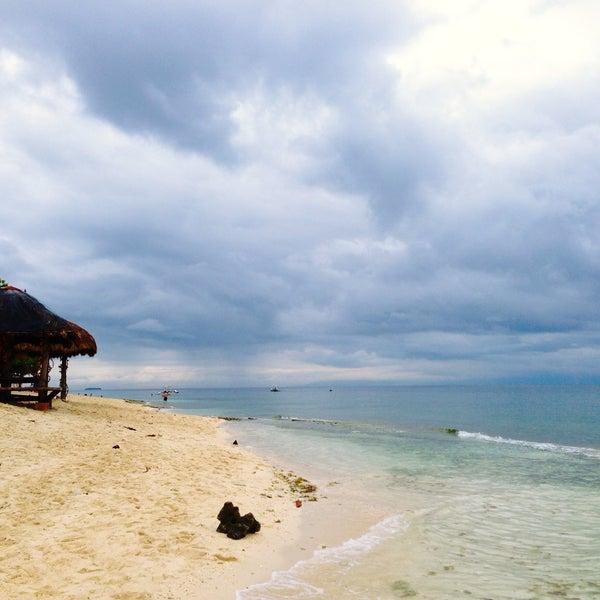 Photos At Basdaku Beach Resort Moalboal