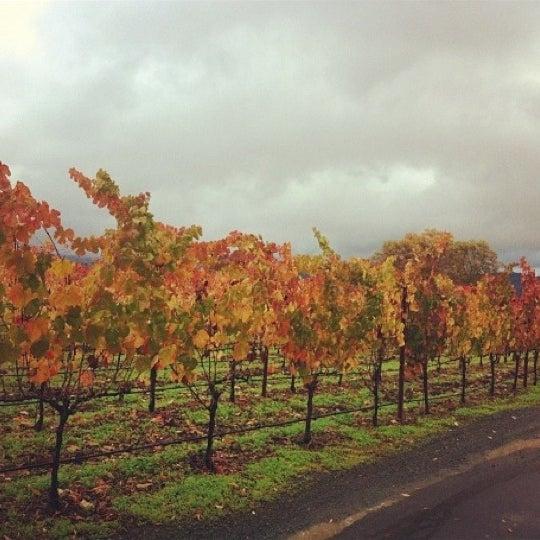 Foto scattata a Peju Province Winery da Melody D. il 11/21/2012
