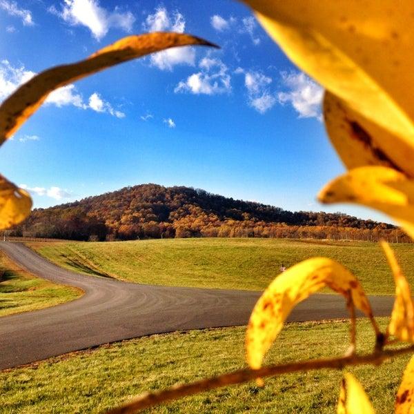 Снимок сделан в Early Mountain Vineyards пользователем Liz S. 11/11/2013