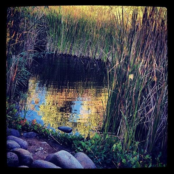 Foto tirada no(a) Desert Botanical Garden por HEATHER K. em 9/30/2012