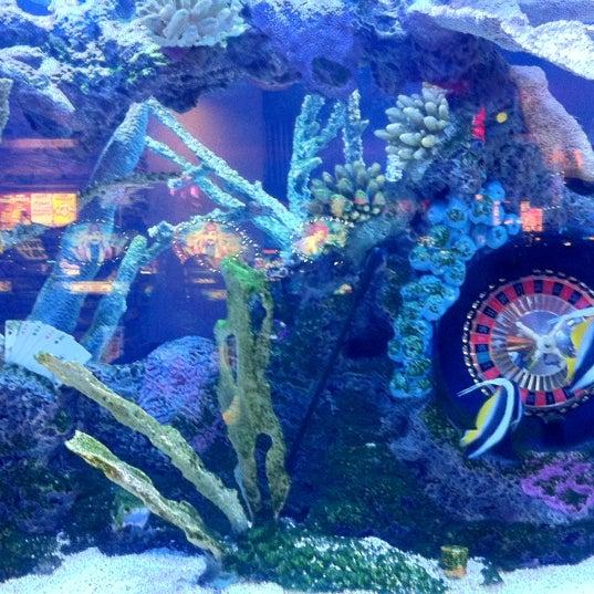 รูปภาพถ่ายที่ Valley View Casino & Hotel โดย Matt M. เมื่อ 11/3/2012