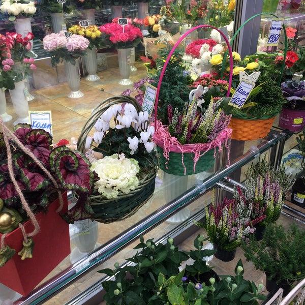 Цветочные салоны нижнего новгорода фотогалерея открытки