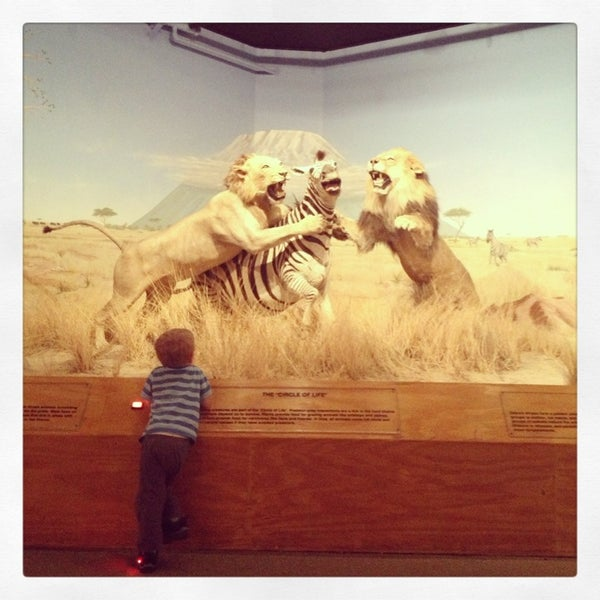 Foto tirada no(a) Las Vegas Natural History Museum por Skin City Body Painting em 2/2/2013