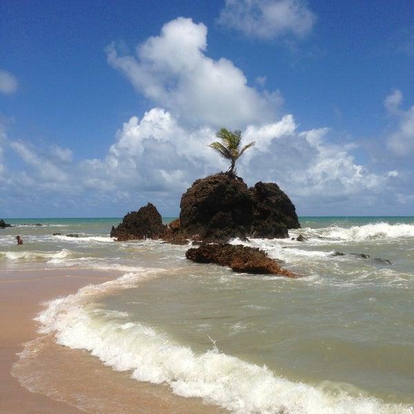 Photos at Praia de Tambaba - Nudist Beach in Conde