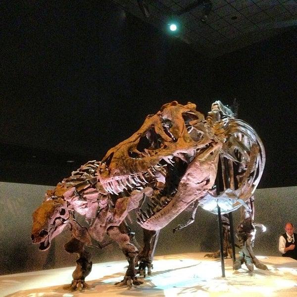Foto scattata a Houston Museum of Natural Science da Adam R. il 6/15/2013