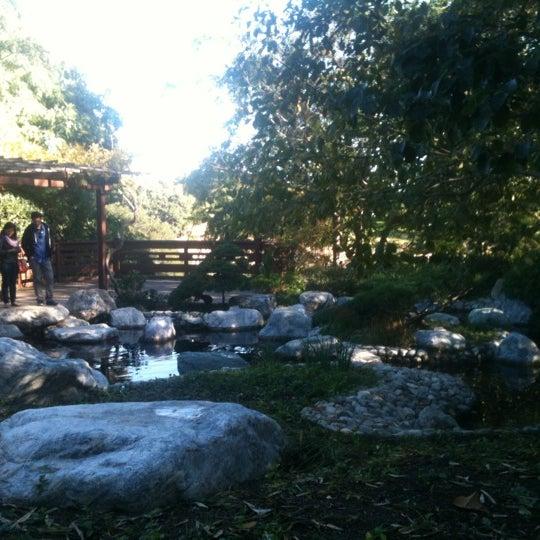 11/11/2012にEvgeniyaがJapanese Friendship Gardenで撮った写真