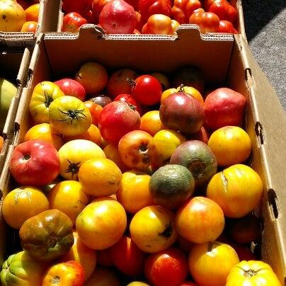 9/22/2012にJ J.がFerry Plaza Farmers Marketで撮った写真