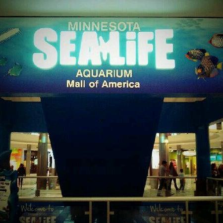 9/30/2012에 Pat S.님이 SEA LIFE Minnesota Aquarium에서 찍은 사진