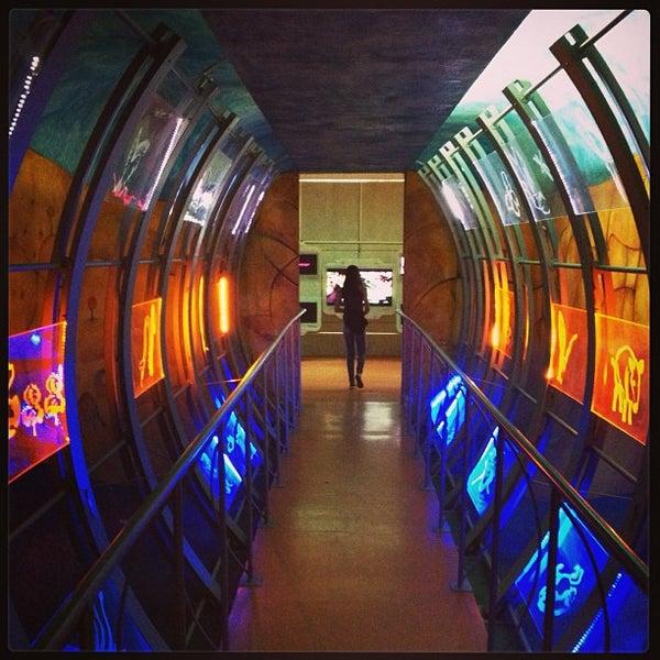 5/19/2013에 Raul M.님이 Universum, Museo de las Ciencias에서 찍은 사진