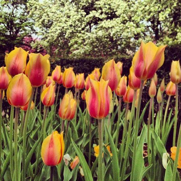 Foto scattata a Conservatory Garden da Jeffrey L. il 4/28/2013