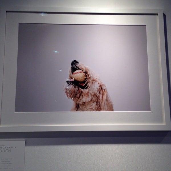 Foto tirada no(a) Ignite Glass Studios por Marie N. em 10/2/2013