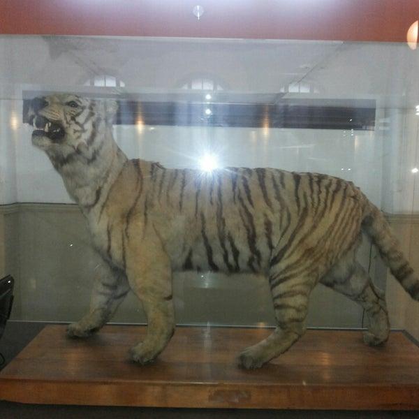 5/21/2013にSimon G.がMuseo Nacional de Historia Naturalで撮った写真